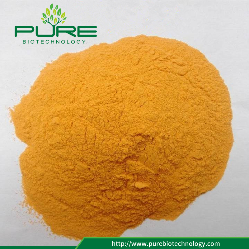 Freeze Dried Sea Buckthorn Powder with No Additives (2)
