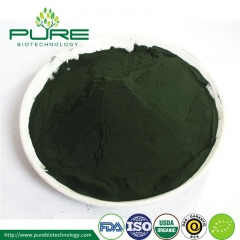 Organic Spirulina Powder/Tablet