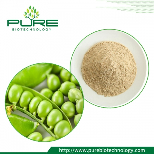 Certified Organic Pea Protein
