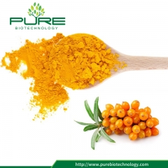 Freeze Dried Sea Buckthorn Powder with No Additives